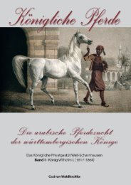 Königliche Pferde - Leseprobe