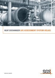 Heat Exchanger Life Assessment System (HELAS) - SGS