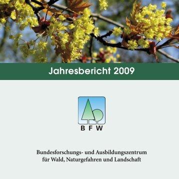 pdf [6 MB] - BFW