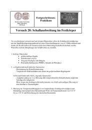 Schallausbreitung im Festkörper - Positron Annihilation in Halle