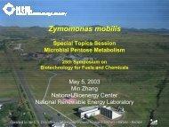 Pentose-Fermenting Zymomonas mobilis - EERE - U.S. Department ...
