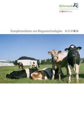 Komplettanbieter von Biogastechnologien -  Viessmann