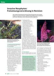 Invasive Neophyten: Freisetzungsverordnung in ... - Jardin Suisse