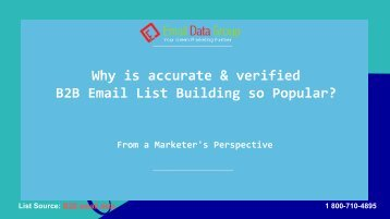 Verified B2B Email Lists for Marketing Camapigns