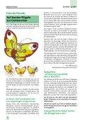 Das Blatt 2/2007 - Stadtverband der Kleingärtner Düsseldorf eV - Page 2