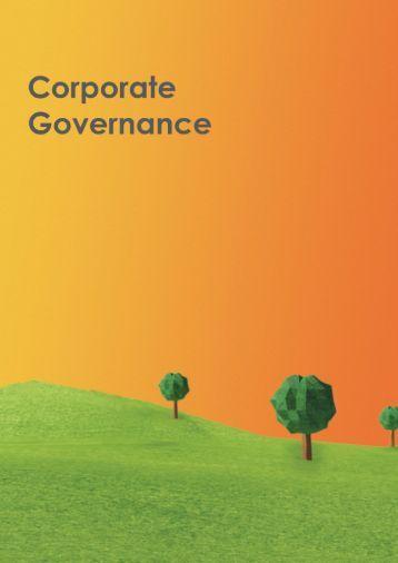 2014 Corporate Governance