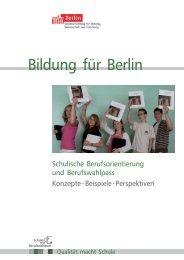 Schulische Berufsorientierung und Berufswahlpass - Partner:Schule ...