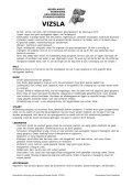 Rasstandaard draadhaar - Magyar-Vizsla.nl - Page 2