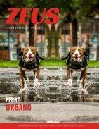 Pets Film studio magazin - Page 7