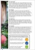 Äpfel - SanLucar - Seite 6