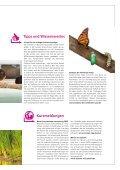 Erdgas auf Reisen - Stadtwerke Weinheim - Seite 3