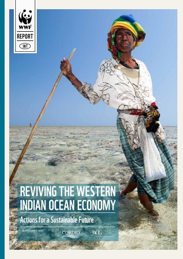 Western Indian Ocean Economy REPORT 2017