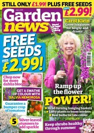 Garden News - July Digital Sampler