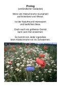 Klatschmohn-Verse - Page 4