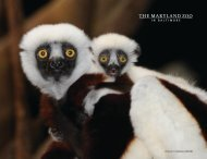 2010-2011 ANNUAL REPORT - The Maryland Zoo in Baltimore