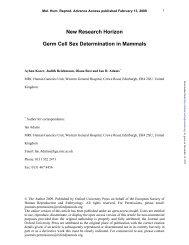 New Research Horizon Germ Cell Sex Determination in Mammals