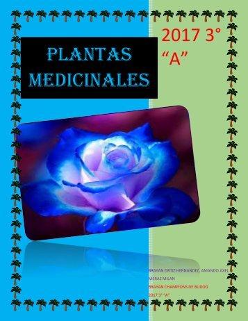 PLANTAS-MEDICINALES (1)