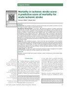 Mortality in ischemic stroke score - Page 2
