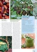 Giftige Bohnen - Sperli - Seite 4