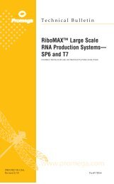 RiboMAX™ Large Scale RNA Production Systems— SP6 ... - Promega