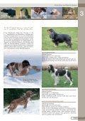 Jagdhunderassen - Seite 7