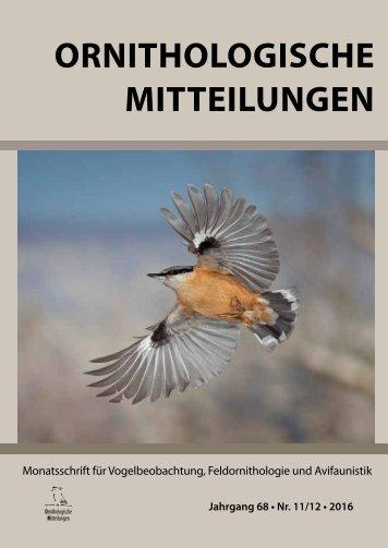Buch_OrnMitt11_12_2016_web