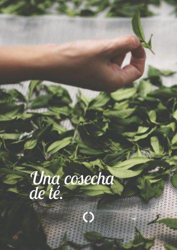 Una cosecha de té.