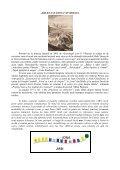"""Balena lui IONA"" si virusul - Page 2"
