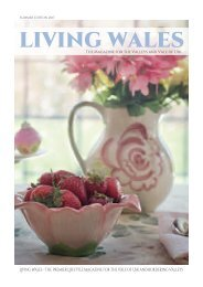 Living Wales SUMMER 2017 web