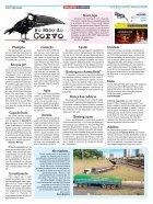 GAZETA DIARIO 319 - Page 6