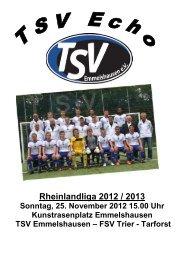 Jugendfußball beim TSV Saison 2012 / 2013 D 1 - TSV ...