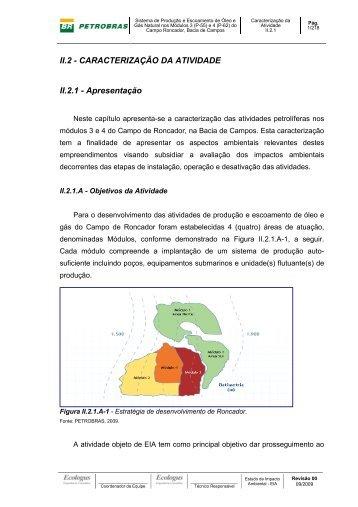 II.2-Caracterizacao da Atividade.pdf - Ibama