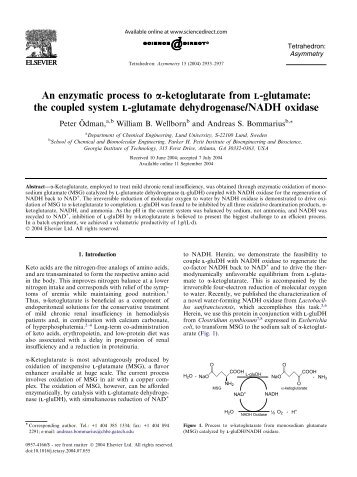 the coupled system L-glutamate dehydrogenase/NADH oxidase