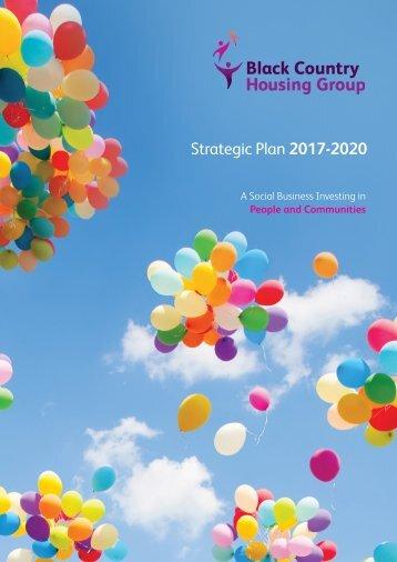 BCHG Strategic Plan 2017-2020