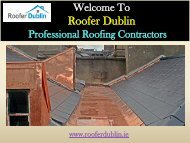 Roofing Repairs in  Dublin