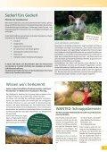 Der Gerungser  - Page 5