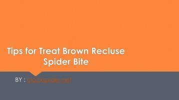 Tips for Treat Brown Recluse Spider Bite