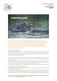 Fiche hippopotame