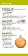 Folleto Cebollas General - 2016 - Page 5