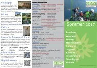 FlyerSommer2017WEB1
