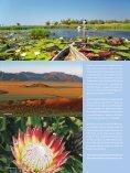 DERTOUR Afrikaerwartetsie 1112 - Seite 3