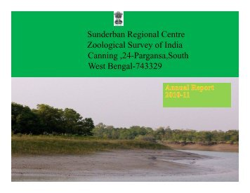 SRC-Canning - Zoological Survey of India