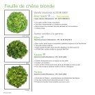 Salade Abri 2017-2018 - Page 6
