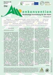 Alpenkoventions-Zeitschrift 85