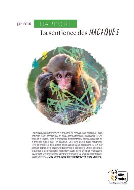 La sentience des macaques