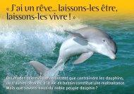 Carte sentience dauphins