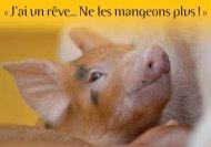Carte sentience cochons
