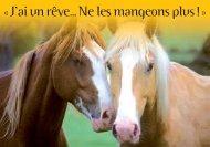 Carte sentience chevaux