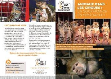Animaux dans les cirques