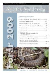 Nyt fra Søndervig - Foråret 2009